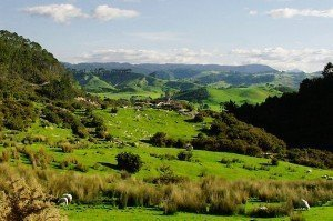 land investments and land banking in new zealand