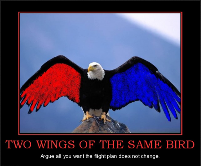 two wings of the same bird