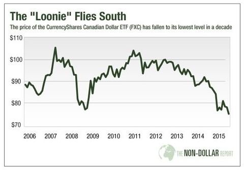 The Loonie Flies South